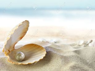 11167674-Shell-with-a-pearl-Stock-Photo-sea