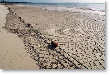 fishing_nets