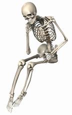 skeleton-2504345_960_720