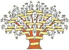 geraamtes in die kas mat 1 ng kerk adelaide